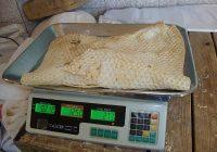 الزام نانوایی ها به فروش کیلویی نان
