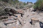 قطع درختان محدوده رودخانه «ماربره» / تشکیل پرونده برای شهرداری دورود