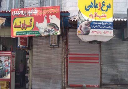 پرواز مرغ از مرغ فروشی های سطح شهر/عدم توزیع مرغ زنده جهت کشتار